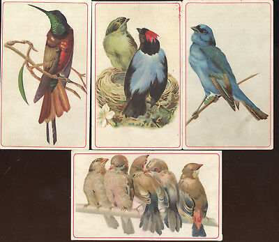 Lot Of 4 1890S Trade Cards, Arbuckle's Ariosa Coffee Advertising, Diff. Birds