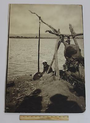 Huge Antique Orientalist Photograph Egyptian Farmer & Nile Shaduf Irrigation