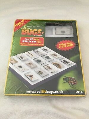 Real Life Bugs And Insects Magazines, Display Case New And Unused