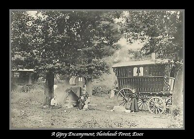 Print/Photograph/Photo/Gypsy/Travellers/Encampment/Hainhault Forest/Essex/1930's