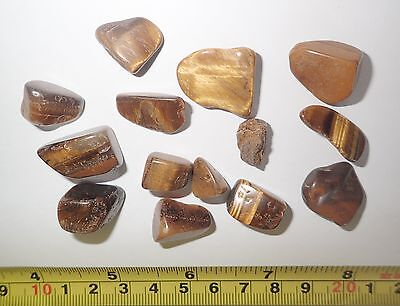 Tumbled Stone Tiger Eye Stone Small pcs 14 pieces Lot 1.5 to 7.1 gram