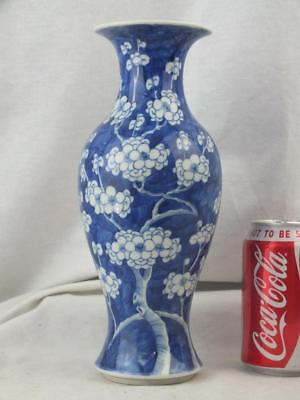 19Th C Chinese Porcelain Blue And White Prunus Vase - Circle Marks