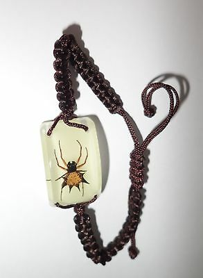 Insect Bracelet Spiny Spider Gasteracantha kuhlii Specimen Glow in the dark