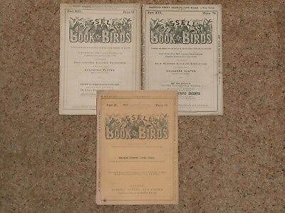 ANTIQUE BIRD,ORNITHOLOGY MAGAZINES(3) (CASSELLS) 19th CENTURY! VERY RARE!