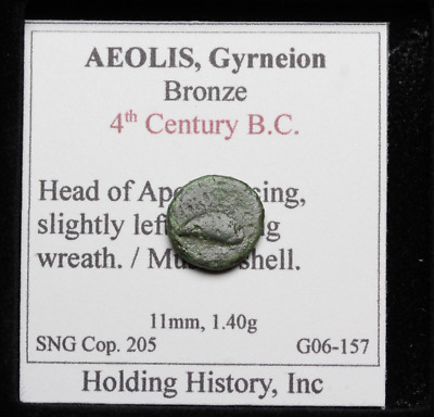 AEOLIS, Gyrneion. 4th Century B.C. Apollo facing / Mussel shell