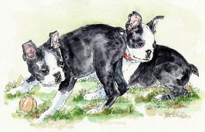 BOSTON TERRIER Original Watercolor on Ink Print Matted 11x14 Ready to Frame