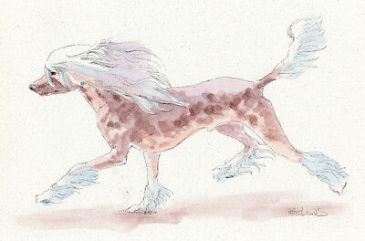 CHINESE CRESTED Original Watercolor on Ink Print Matted 11x14 Ready to Frame