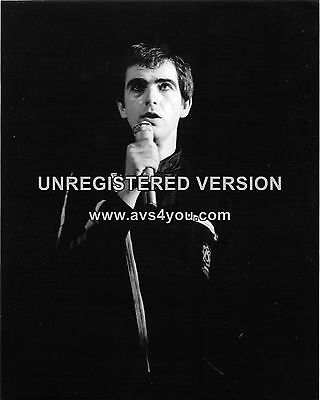 "Peter Gabriel 10"" x 8"" Photograph no 2"