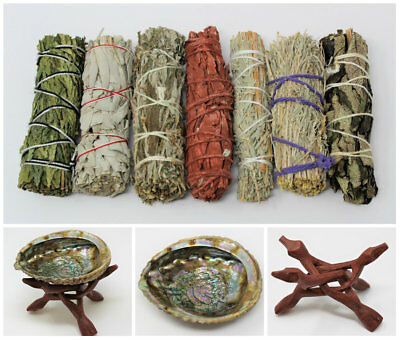 Abalone Shell, Stand & 7 Sage Smudge Sticks COMPLETE SAMPLER KIT (Cleansing)
