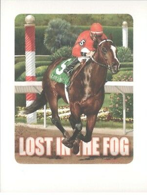 "Named Thoroughbred Horse Postcard  ""Lost in the Fog"""