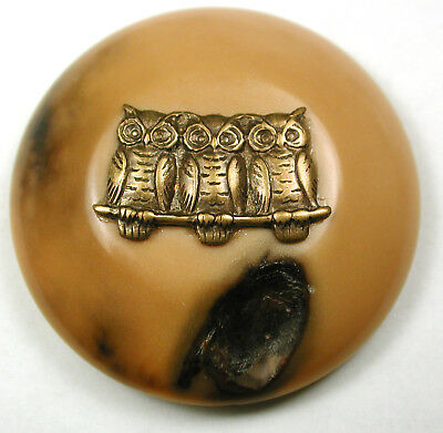 """Vegetable Ivory Studio Button w/ Brass 3 Owls on a Branch OME - 1 & 9/16"""""""