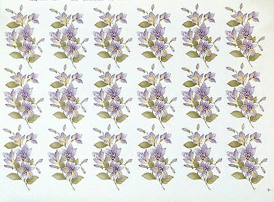 CERAMIC DECALS ORCHID 18 ON A SHEET 10 cm X 5 cm 747813 36 SALE PRICE
