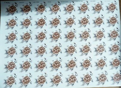 CERAMIC DECALS 707782 48ON A SHEET JUNE ROSE 9 cm X4 cm RIGHT PRICE