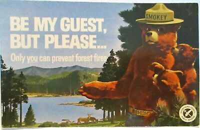 1960s POSTCARD ONLY YOU CAN PREVENT FOREST FIRES, SMOKEY BEAR