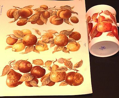 Ceramic Decals  6 Golden Fruits  By Transgrave Rapround Right Price