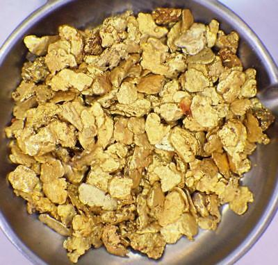AUGUST SPECIAL!!! GOLD NUGGETS 10+ GRAMS Natural Placer Alaska Natural #10 DW Cr