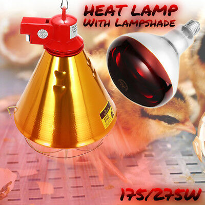 175/275W Heat Lamp / Infrared Red Bulb For Poultry Puppies Piglet Chicks New