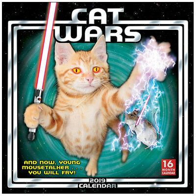 Cat Wars Star Wars Spoof 16 Month 2019 Photo Images Wall Calendar NEW SEALED