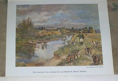 Large Colour Antique Otterhound Dog Picture 1956 Lionel Edwards Otter Hunting