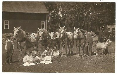 Farm east Montevideo? Severson family horse goat from Red Wing MN rppc Postcard