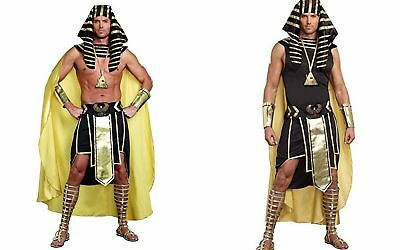 Dreamgirl King Of Egypt King Tut Ancient Adult Mens Halloween Costume 9893