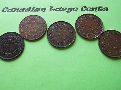 Lot of 5 Canadian Large Cent   1859, 1910,1912, 1916, 1918   (CLC18)