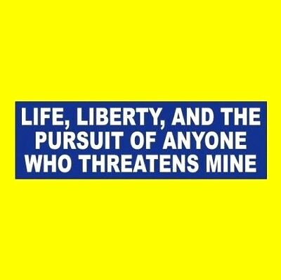 """'LIFE, LIBERTY, PURSUIT OF ANYONE WHO THREATENS MINE"" gun rights BUMPER STICKER"