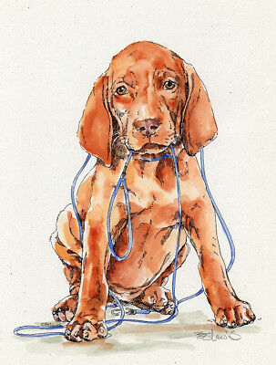 VIZSLA LEASH Original Watercolor on Ink Print Matted 11x14 Ready to Frame