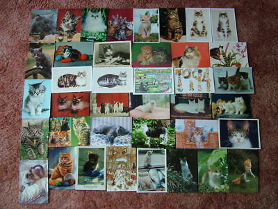 39 Postcards of CATS. Used and Unused. 1960's onwards.