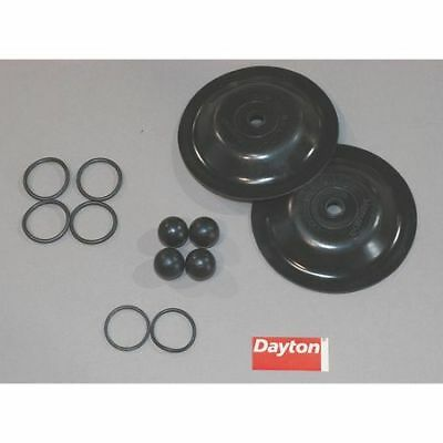Pump Repair Kit,Fluid DAYTON 6PY66
