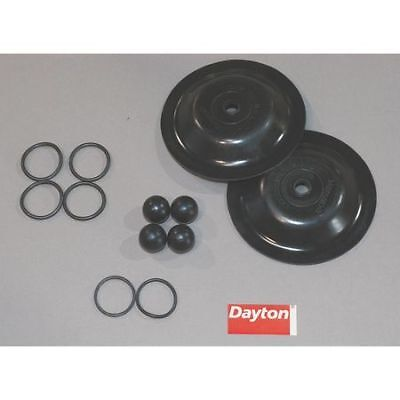 DAYTON 6PY67 Pump Repair Kit,Fluid
