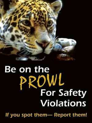Safety Poster,24 x 18In,FLEX PLSTC,ENG ACCUFORM PST106