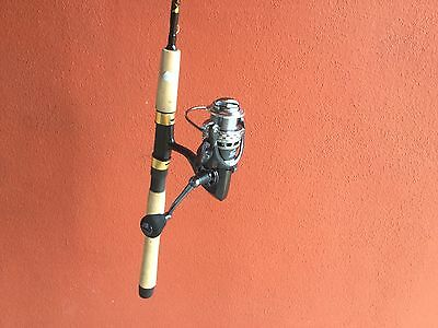 Bream Rod / 2 speed Spin Reel Combo unique