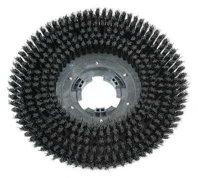 Scrub Brush,15 in.,Blk,Mfr. No. FANG15B