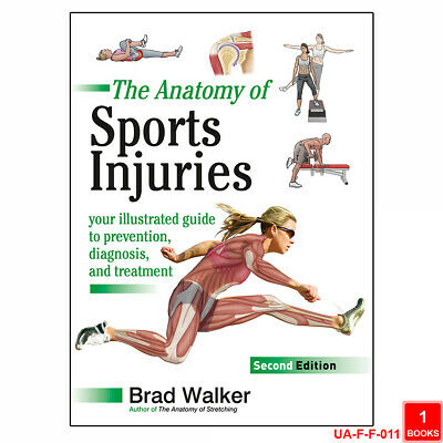 Cal Newport 3 Books Collection Deep Work So Good They Can't Ignore You Set NEW