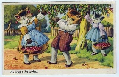 "French Cat Postcard Dressed Cats Picking Cherries ""At the Time of Cherries"""