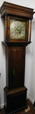 oak cased 8 day brass dial longcase clock,--thos storer darby on dial