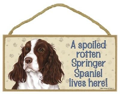 SPRINGER SPANIEL A Spoiled Rotten DOG SIGN wood WALL hanging PLAQUE puppy USA
