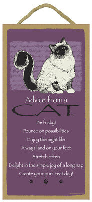 ADVICE FROM A CAT wood INSPIRATIONAL SIGN wall NOVELTY PLAQUE Kitty USA MADE New