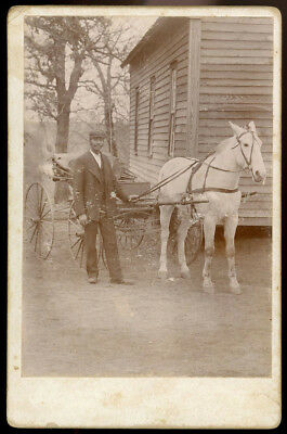 Handsome Black Man White Horse Harness & Carriage Cabinet Card Photo