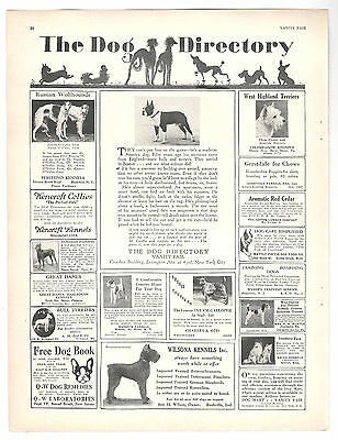 Dog Directory Ad 1929 vintage advertising PURE BREDs Boston Terrier Wolfhounds