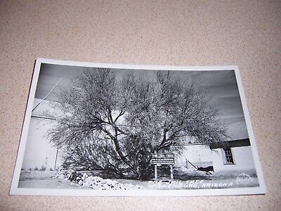 Arizona, US States, Cities & Towns, Postcards, Collectibles