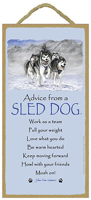 ADVICE FROM A SLED DOG SIGN wood NOVELTY wall hanging PLAQUE Husky USA MADE