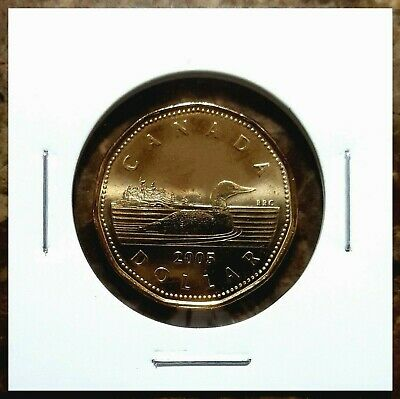 Canada 2005 Loonie BU UNC From Mint Roll!!