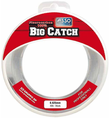 Asso Big Catch 100% Fluorocarbon - All Sizes