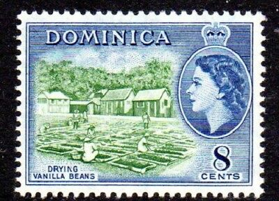 1954-62 DOMINICA 8c drying vanilla beans SG149 mint unhinged