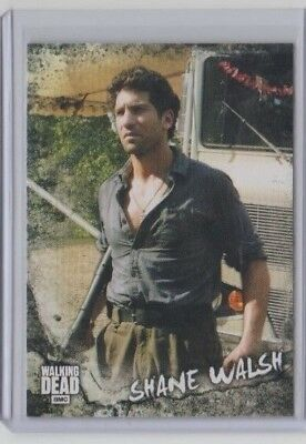 Walking Dead Road To Alexandria Character Chase Card C-4 Shane Walsh
