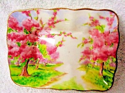 Royal Albert Blossom Time Pink And Green Oblong Dish