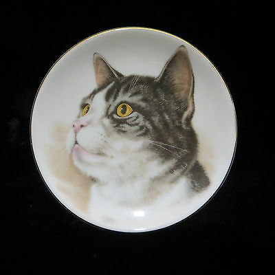"""Gray White Tabby Cat Miniature Collector Plate Dish Porcelain 4"""" Feline Kitty"""