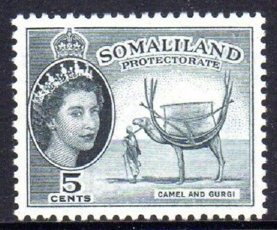 1953-58 SOMALILAND PROTECTORATE 5c camel & Gurgi SG137 mint very light hinged